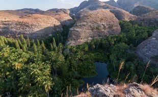 Avec son lac et ses palmiers, le canyon Andakatomenavava est un écosystème emblématique du Makay.