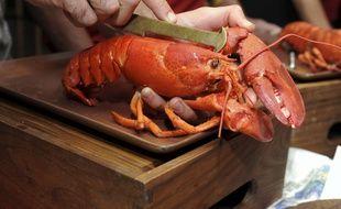 En Suisse, il faut désormais étourdir les homards avant de les plonger dans l'eau bouillante.
