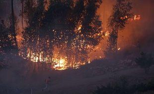 Le pilote, de nationalité portugaise, était expérimenté et participait au dispositif anti-incendie depuis 2013.