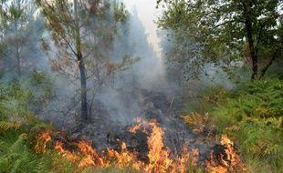 Incendie de forêt le 24 juillet 2015 à Saint-Jean d'Illac à une vingtaine de km de Bordeaux