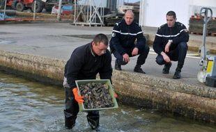 Des gendarmes discutent avec un ostréiculteur, le 20 décembre 2011, lors d'une patrouille pour lutter contre le vol d'huîtres dans les parcs ostréicoles de Beauvoir-sur Mer