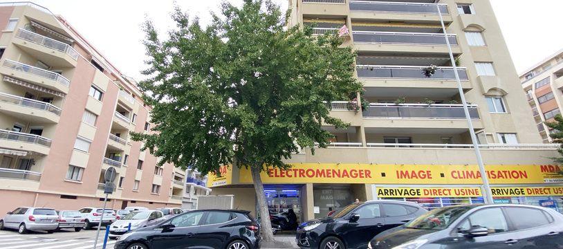 L'arbre de la discorde est planté sur la rue de Roquebilière