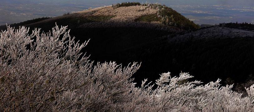 Dans le Parc Naturel Régional du Pilat, en Loire, le 18 janvier 2020 (image d'illustration).