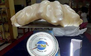 Un pêcheur philippin a découvert une perle de 34 kilos et de 62 centimètres de diamètre il y a dix ans à Puerto Princesa, au large de l'île de Palawan. La perle a refait surface en août 2016.