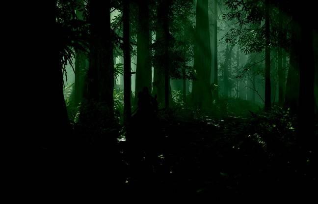 On retrouve les univers gris et sombres de Fumito Ueda alors que le héros déambule dans ces plaines et forêts...