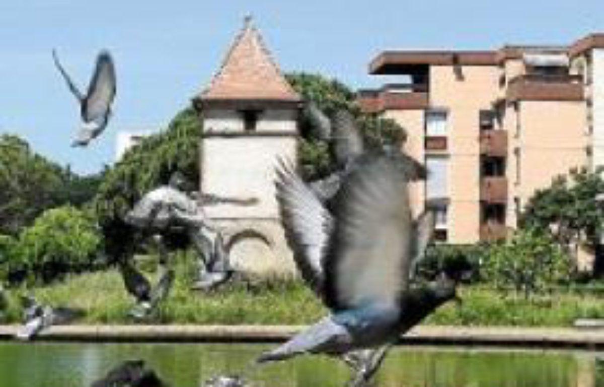 Le pigeonnier de la Reynerie reprendra du service en septembre prochain. –  F. Scheiber/20 minutes