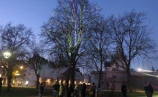 L'arbre à voeux, installé près du Miroir d'eau à Nantes