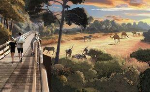 Le projet de méta-enclos du zoo de Montpellier.