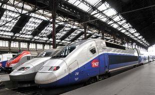 Illustration de TGV à quai, gare de Lyon.