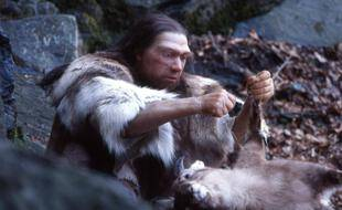 Homo sapiens neanderthalensis (reconstitution au Neanderthal Museum)