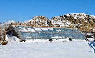 Le Geres permet à des petits agriculteurs de Mongolie d'utiliser des serres solaires passives pour le maraîchage.