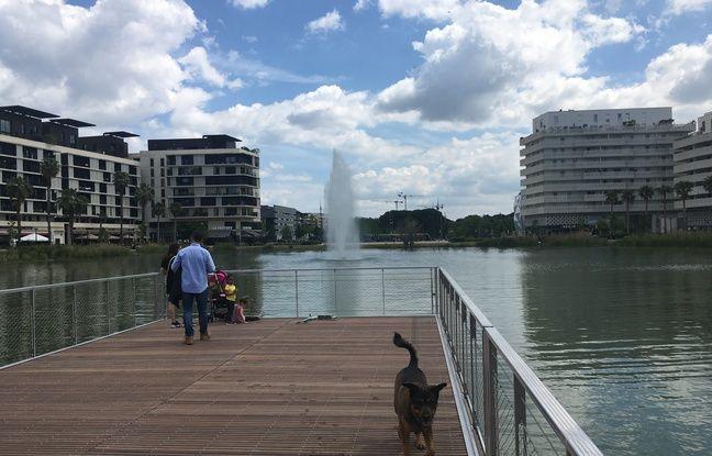 Le bassin Jacques Coeur à Montpellier