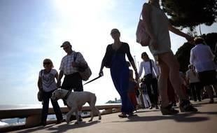 Un chien se balade sur la Croisette, à Cannes (Illustration)