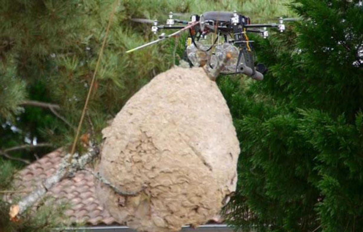 Le drone chasseur de nids de frelons asiatiques – France Frelons