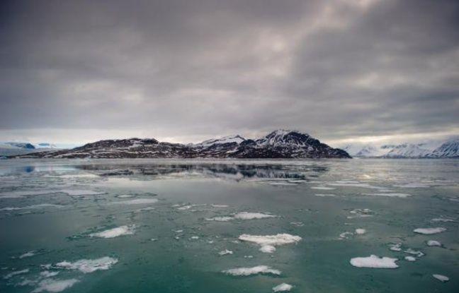 Des écarts extrêmes de températures ont été détectés dans l'Arctique lors des dernières 2,8 millions d'années avec des pics de chaleur jugés jusqu'alors impossibles dans la région, révèle jeudi l'analyse de la plus longue carotte de sédiments jamais prélevée dans ce sol.