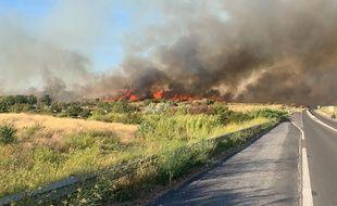 Une photo de l'incendie survenu ce dimanche à Loupian