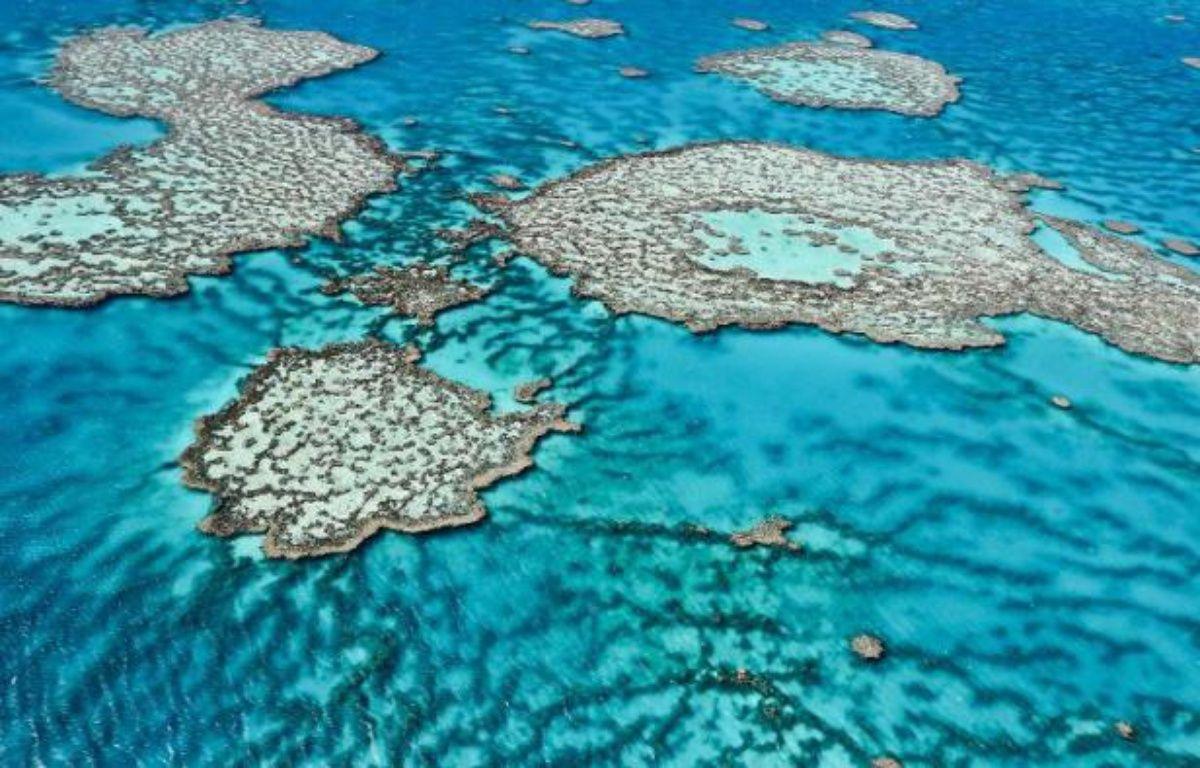 Photo non datée de la Grande barrière de corail fournie le 1er août 2013 par l'Institut australien de science marine –  AIMS