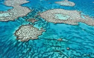 Photo non datée de la Grande barrière de corail fournie le 1er août 2013 par l'Institut australien de science marine