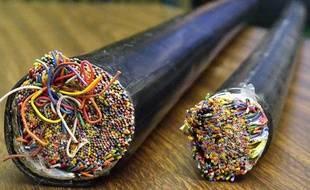 Les câbles télécoms sont souvent la cible des voleurs à la recherche de cuivre