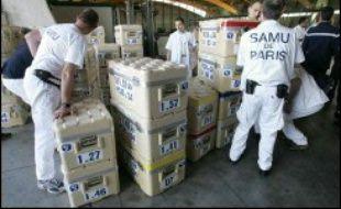 La Fédération internationale des Sociétés de la Croix-Rouge et du Croissant-Rouge a lancé un appel de fonds de 9,79 millions dollars (7,68 millions euros) afin daider la Croix-Rouge indonésienne à assister les rescapés et a envoyé sur place des équipes médicales venues des pays voisins.