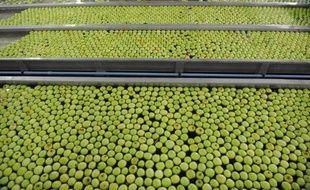La course au prix le plus bas entre les enseignes risque de coûter 5.000 emplois dans l'industrie agroalimentaire, selon l'association des professionnels du secteur