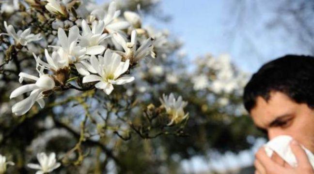 La rhinite alelrgique, ou rhume des foins, fait son retour avec le printemps – ALOM-GOMIS SEBASTIEN/SIPA