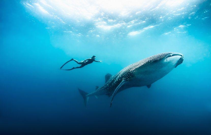 Notre Top 3 des destinations pour les amateurs de sports nautiques