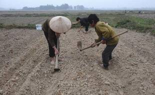 Les expropriations de terres sont sources de tensions depuis des décennies au Vietnam, mais la température est brusquement montée d'un cran depuis qu'un paysan s'est barricadé dans sa maison, avec mines et arme à feu, pour tenir tête aux forces de l'ordre.