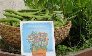 Les Passeurs de jardin présentent le guide la végétalisation