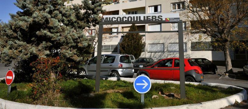 Illustration de la cité des Micocouliers à Marseille