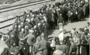 Photo du camp d'extermination.