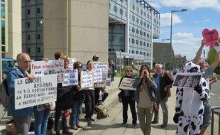 Une action de militants  du collectif OEDA, Oui à l'étourdissement dans les abattoirs.