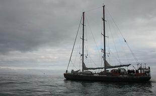 Le voilier Tara rentre à son port d'attache de Lorient, le 22 novembre 2014.