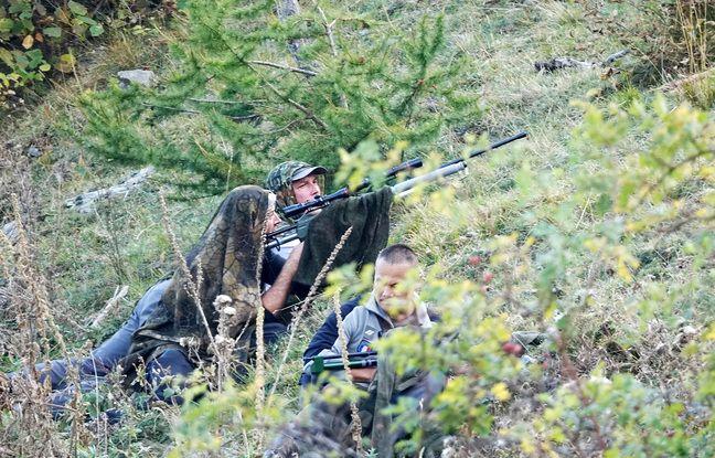 Les équipes de l'Office français de biodiversité en planque pour pouvoir anesthésier les loups échappés du parc Alpha