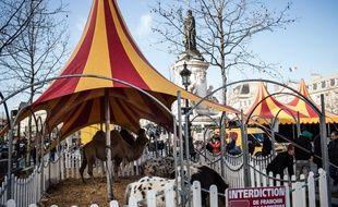 Plusieurs cirques se sont donnés rendez-vous place de la République pour défendre leur métier.