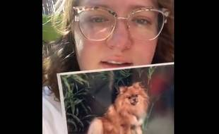 Dans la vidéo, la Montpelliéraine raconte s'être fait voler sa chienne