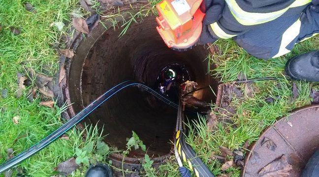 Nord: Une fillette tombée dans un puits de 10m sauvée par les pompiers