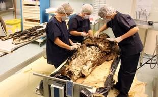 Le corps de Louise de Quengo, morte en 1656, a été ôté de tous les tissus à Toulouse.