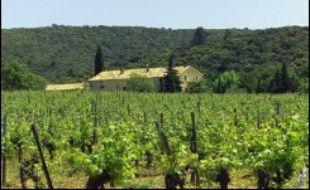 Dominique de Villepin s'est rendu vendredi dans l'Hérault pour annoncer des mesures de soutien, sociales et fiscales, à la filière viticole, durement touchée par la crise, sans toutefois pleinement convaincre les professionnels présents.