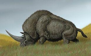 La « licorne de Sibérie » mesurait 4,5 mètres et pesait 4 tonnes.
