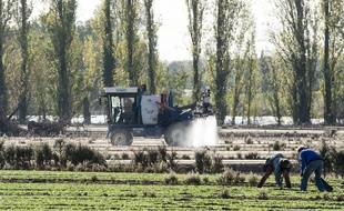 Épandage de pesticides dans un champ en Loire-Atlantique, en octobre 2018.