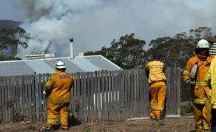 Des pompiers luttent contre un feu de broussaille, en janvier 2020.