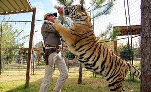 L'ancien éleveur de fauves, Joe Exotic, et un de ses tigres