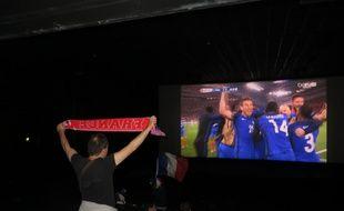 Un fan des Bleus exulte après le but d'Antoine Griezmann contre l'Albanie, le 15 juin 2016 au Méga CGR de Blagnac.