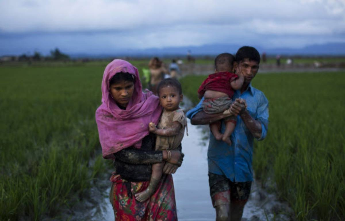 Des réfugiés Rohingyas marchent dans des champs de riz après avoir franchi la frontière avec le Bangladesh. – Bernat Armangue/AP/SIPA