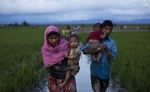 Des réfugiés Rohingyas marchent dans des champs de riz après avoir franchi la frontière avec le Bangladesh.