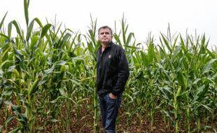 L'agriculteur Paul Francois, dans ses champs de céréales de Bernac, le 28 juillet 2015