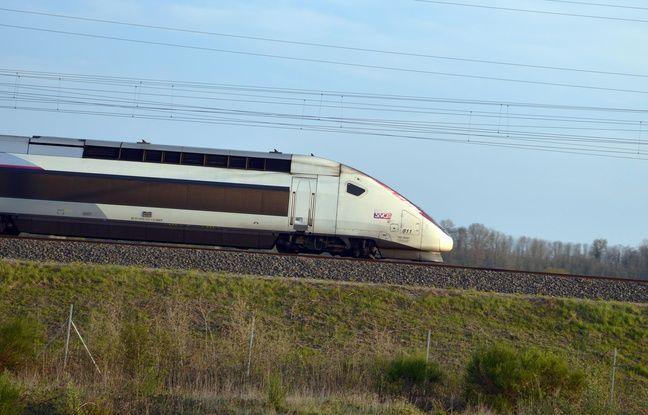 SNCF: Circulation des TGV interrompue entre Lille et Bruxelles en raison d'un «accident de personne»