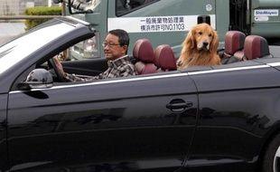 Un homme dans son cabriolet et son chien, le 13 novembre 2010.