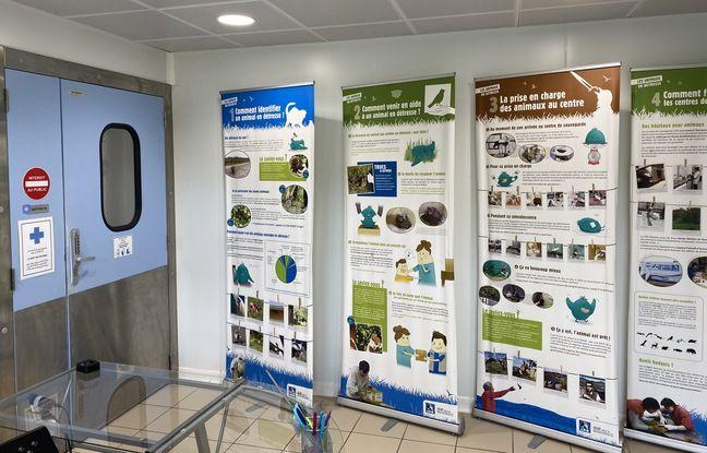 L'accueil du centre de soins pour animaux de la LPO à Audenge (Gironde)